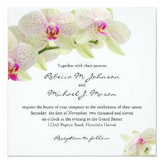 Beautiful White and Hot Pink Orchids Invite