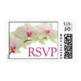 Beautiful White and Hot Pink Orchids RSVP Postage