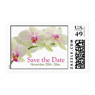 Beautiful White and Hot Pink Orchids Save the Date Postage