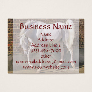 Beautiful White Arabian Horse Business Cards