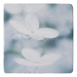 Beautiful white blossoms trivet