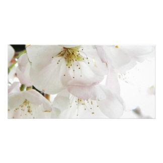 Beautiful White Card