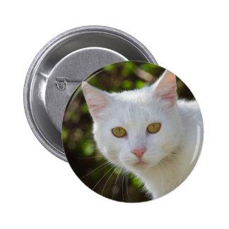 Beautiful White Cat Button