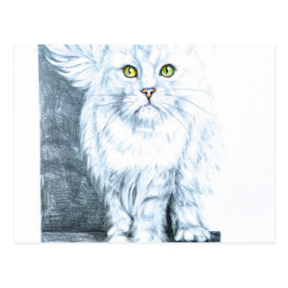 Beautiful white cat on chair postcard