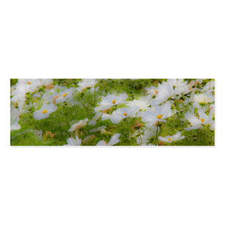 Beautiful White Cosmos Bookmark/Business Card Double-Sided Mini Business Cards (Pack Of 20)
