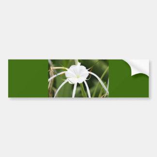 Beautiful White Flower Bumper Sticker