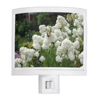 Beautiful white Flowers and Butterfly Night Light