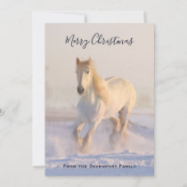 Beautiful White Horse in the Snow Photo Christmas Holiday Card
