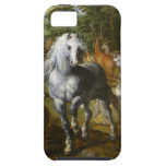 Beautiful White Horse iPhone 5 Cases