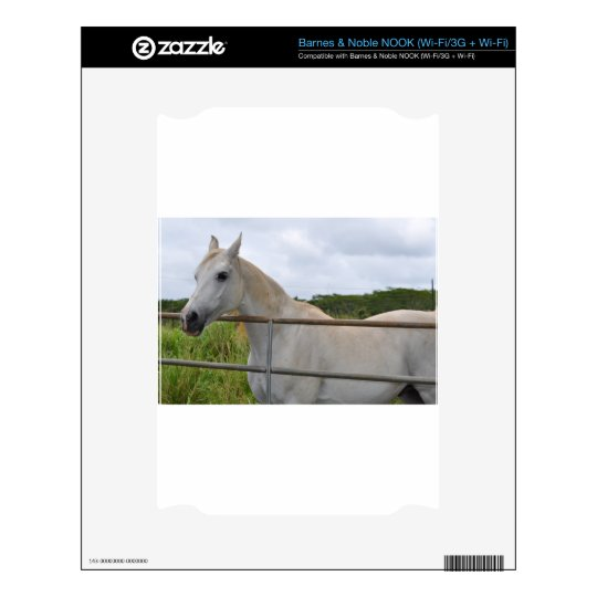 Beautiful white horse photograph NOOK decal