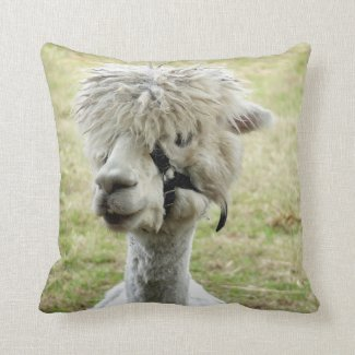 Beautiful White Llama Cushion