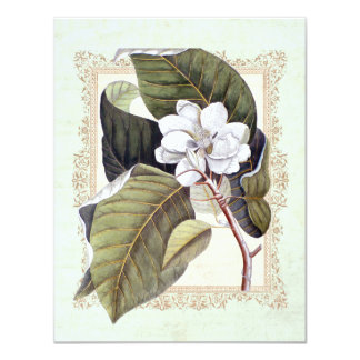 "Beautiful White Magnolia Formal Dinner Party 4.25"" X 5.5"" Invitation Card"