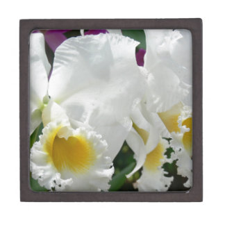 Beautiful White Orchids in Thailand Jewelry Box Premium Trinket Boxes