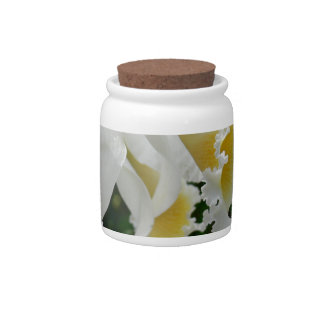 Beautiful White Orchids Photo on a Candy Jar