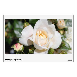 Beautiful white rose flowers. floral photography, wall decal