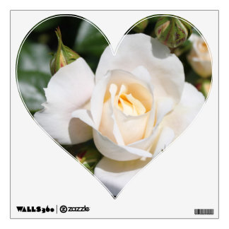Beautiful white rose flowers. floral photography wall sticker