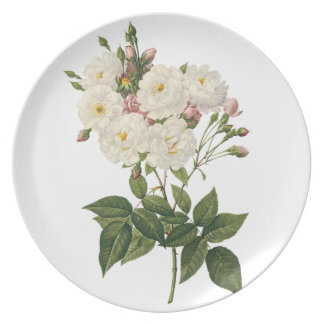 Beautiful White Roses Bouquet Plate