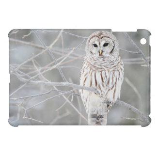 Beautiful White Snow Owl Design Cover For The iPad Mini