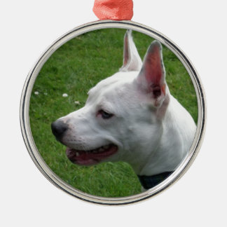 Beautiful White Staffordshire Bull Terrier Christmas Tree Ornament