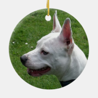Beautiful White Staffordshire Bull Terrier Christmas Ornament