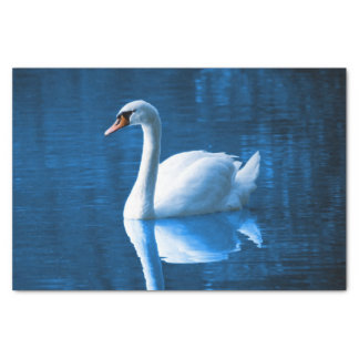 Beautiful white swan in water tissue paper