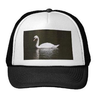 Beautiful White Swan Swimming In Lake Water Trucker Hat