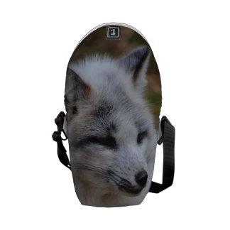 Beautiful White Swift Fox Courier Bag