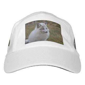 Beautiful White Swift Fox Headsweats Hat