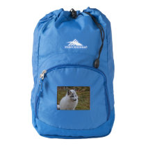 Beautiful White Swift Fox High Sierra Backpack