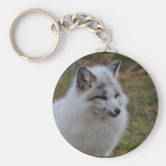 Beautiful White Swift Fox Keychain