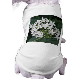 Beautiful White Tropical Flowers Dog Clothing