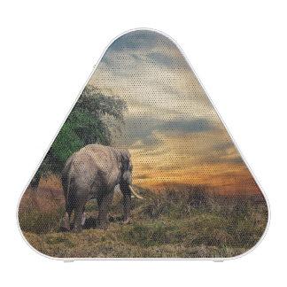 Beautiful Wild Elephant Bluetooth Speaker