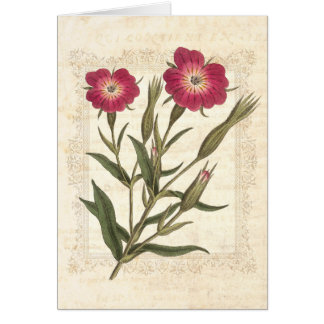 Beautiful Wild Field Flowers Vintage Lace Frame Card