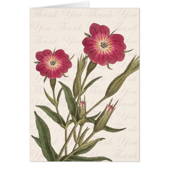Beautiful Wild Field Flowers Vintage Thank You Card