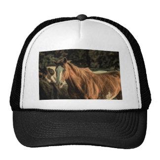 Beautiful wild horse design trucker hat