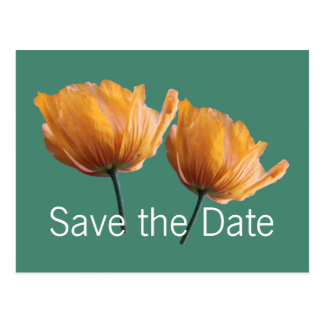 beautiful wild yellow poppy flowers save the date postcard