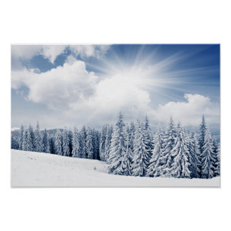 Beautiful Winter Landscape With Snow Poster
