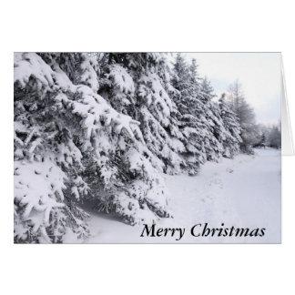 Beautiful Winter Scene Card