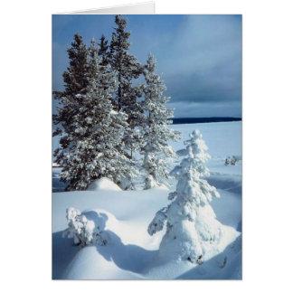 Beautiful Winter Scene Greeting Card