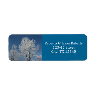 Beautiful  winter snow covered  trees scene label