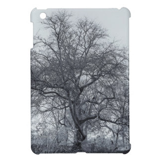 Beautiful Winter Trees in Central Park NYC Cover For The iPad Mini