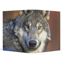 Beautiful Wolf Binder