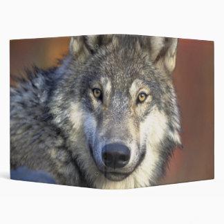 Beautiful Wolf 3 Ring Binder