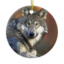 Beautiful Wolf Ceramic Ornament