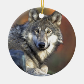 Beautiful Wolf Double-Sided Ceramic Round Christmas Ornament