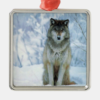 Beautiful wolf in snow christmas holiday ornament