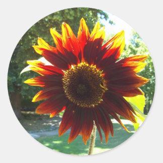 Beautiful Yellow and Red Sunflower Sticker