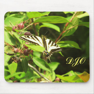 Beautiful Yellow Black Butterfly on Crabapple Tree Mouse Pad