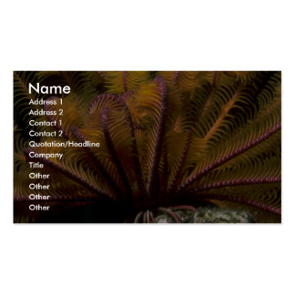 Beautiful Yellow crinoid Double-Sided Standard Business Cards (Pack Of 100)