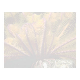 Beautiful Yellow crinoid Letterhead Template